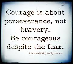courage is perserv not bravery